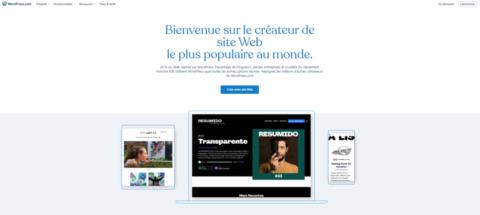 منصة WordPress